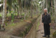 pengolahan kelapa
