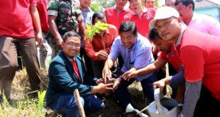 Anggota DPR RI Komisi IV Ir. Mindo Sianipar bersama Kelompok Tani dan Mahasiswa STAIM melakukan tanam bibit pohon produktif di Desa Banggle, Kecamatan Lengkong, Kertosono.